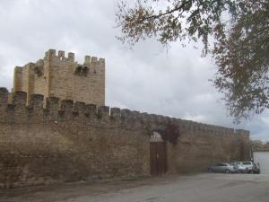 castillodelopera61