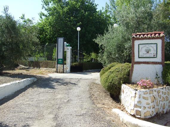 Centro de Rehabilitación de Drogodependientes en Lopera.