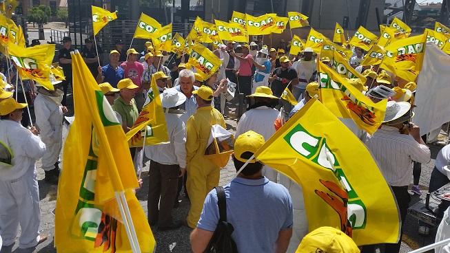 Cientos de apicultores se manifiestan ante las puertas de la Consejería de Agricultura.