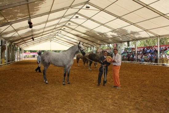 La Junta abre el plazo para solicitar subvenciones para los ganaderos. Foto: Ayuntamíento de Andújar.