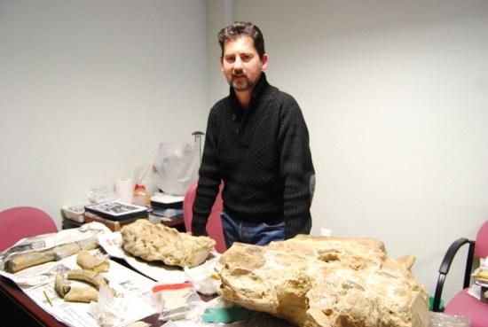 146-vva-reina-restos-fosiles