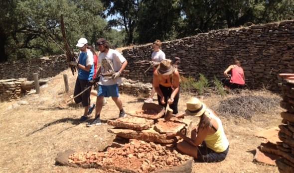 Campos de voluntariado en Andalucía