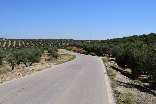 carretera Andújar-Lahiguera