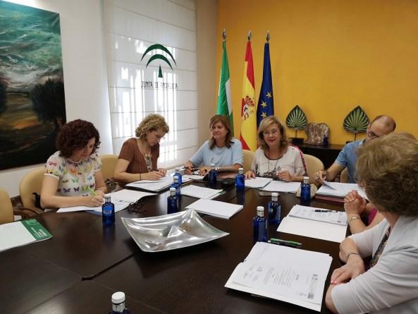 Reunión del Consejo Provincial de Mayores