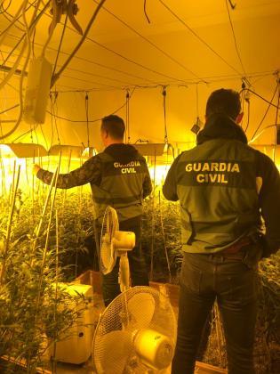 Marihuana en Lopera