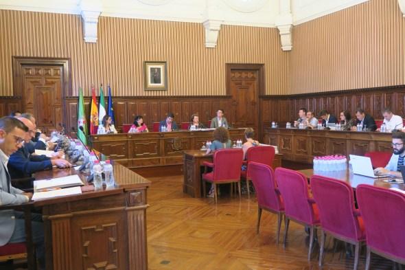 Pleno de la Diputación