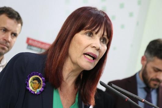 """Micaela Navarro: """"el ingreso mínimo viene a fortalecer nuestro estado social y a ayudar a miles de familias jiennenses""""."""
