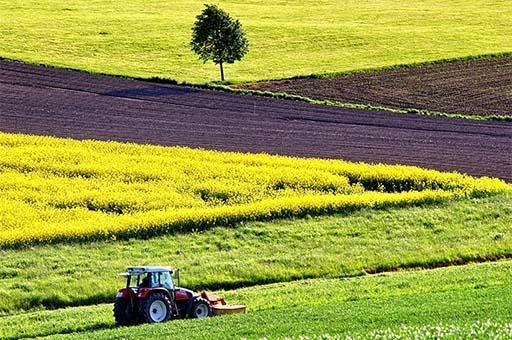 El Ministerio de Agricultura, Pesca y Alimentación convoca el Plan Renove 2020 de maquinaria agrícola dotado con 8 millones de euros.