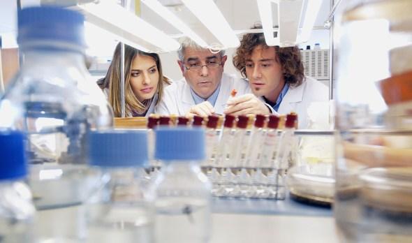 Investigación científica y empresarial