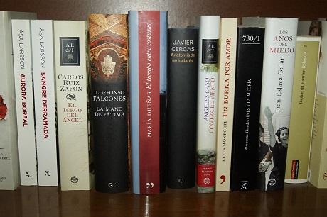 Diputación envía a las bibliotecas de los 97 municipios lotes de publicaciones del IEG con motivo del Día del Libro.