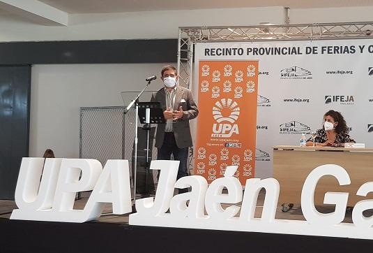 Reyes pide al Gobierno de España que permita a desempleados mantener sus prestaciones y trabajar en la aceituna.