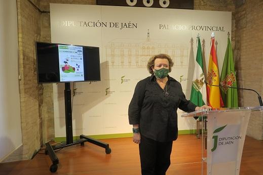 Diputación de Jaén habilita planes personalizados para facilitar el pago de los tributos municipales.