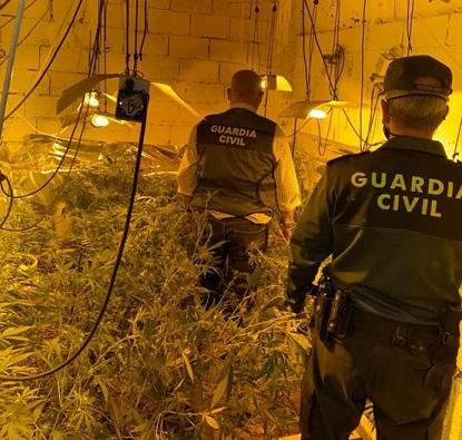 La Guardia Civil desmantela una plantación de marihuana en Lopera.