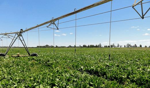 El Gobierno andaluz destinará ocho millones a la mejora energética de explotaciones agropecuarias.