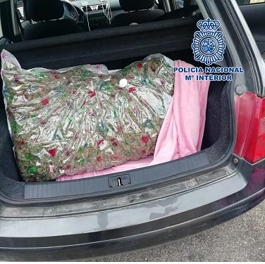 La Policía Nacional detiene en Jaén a cuatro personas que trasportaban siete kilos de marihuana en su vehículo.