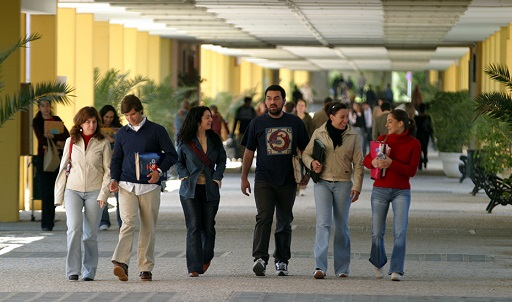 43 titulaciones universitarias andaluzas superan el 70% de inserción y 31 no registran parados al año.