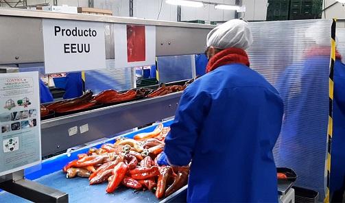 Andalucía supera el nivel de exportaciones previo a la pandemia, con el mejor mes de julio de la historia.