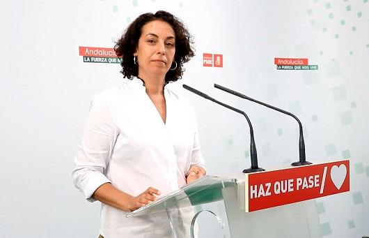 PSOE: «La Junta sólo ha ejecutado el 9% de las inversiones para Jaén».