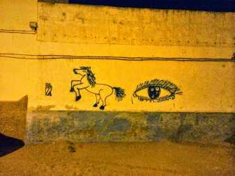 camping-aourir-morocco-in-agadir-city-2-2014