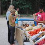 le petit marché du camping l'Art de Vivre