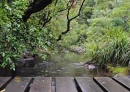 yabba creek circuit - crossing at entrance end