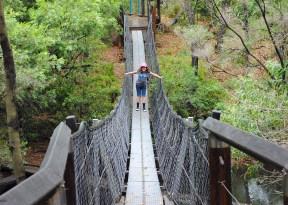 yabba creek circuit - suspension bridge at far end