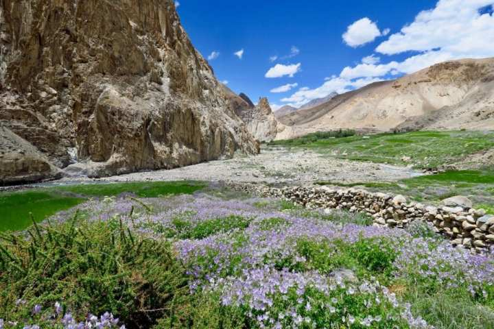Ladakh 3