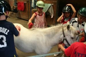 junior horsemanship
