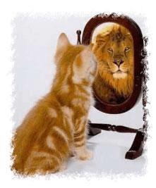 Reflexões sobre a beleza do Senhor