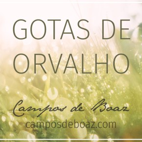 Gotas de orvalho (250) ― Anthony Norris Groves