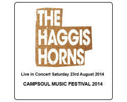 The Haggis Horns Live in Concert at Campsoul 2014!
