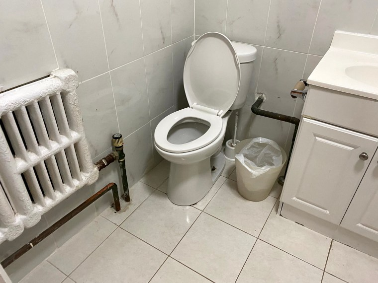 A bathroom with a toilet