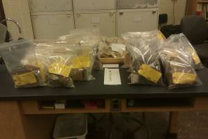 Bagged artifacts ready for processing