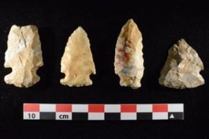 Archaic Projectile Points. Image credit: Dr. Lovis