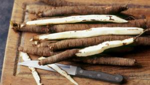 "Salsify. Sadly, it does not instantly turn things into salsa."" (Source: http://www.bbc.co.uk/food/salsify"