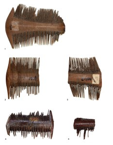 Combs recovered from a Roman Fort. Image Source.