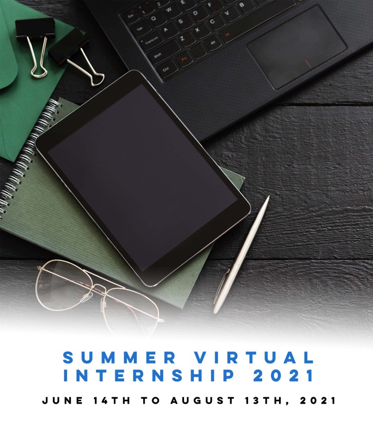 summer virtual internship brazil 2021