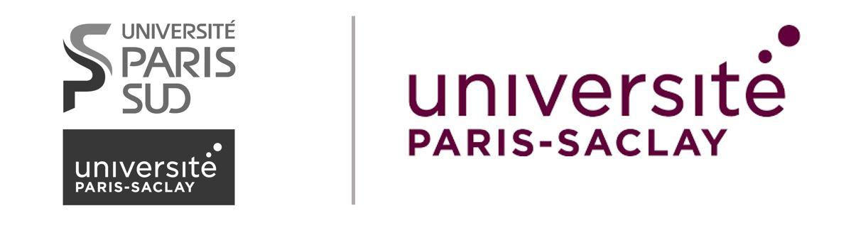 logo Universite Paris Saclay