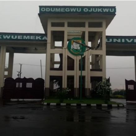 Ojukwu varsity ASUU members bow to hunger, end strike