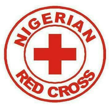 UI Red Cross Celebrates Children's Day at Orphanage, provides free Skill Acquisition