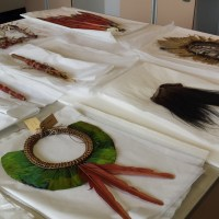 Feather conservation