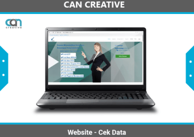 Jasa Pembuatan Website Cek Data