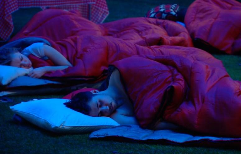 HGs sleeping in the backyard