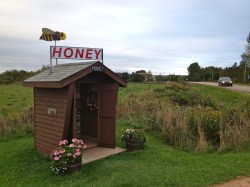 Self-serve honey near Charlottetown