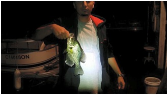 Figure 3 Go fishing 钓鱼
