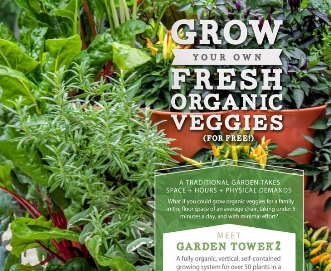 Grow Your Own Organics Spring Giveaway
