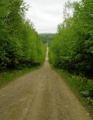 perfect_trail.jpg