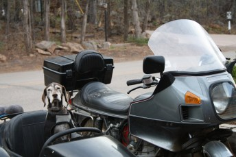 There were plenty of sidecar rigs at Overland Expo - mostly Urals, but some other stuff was there, too.