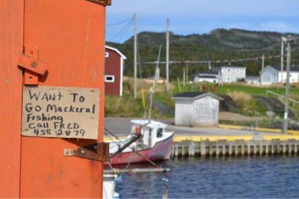 Want to go fishing? Photo: Big Land ADV Films