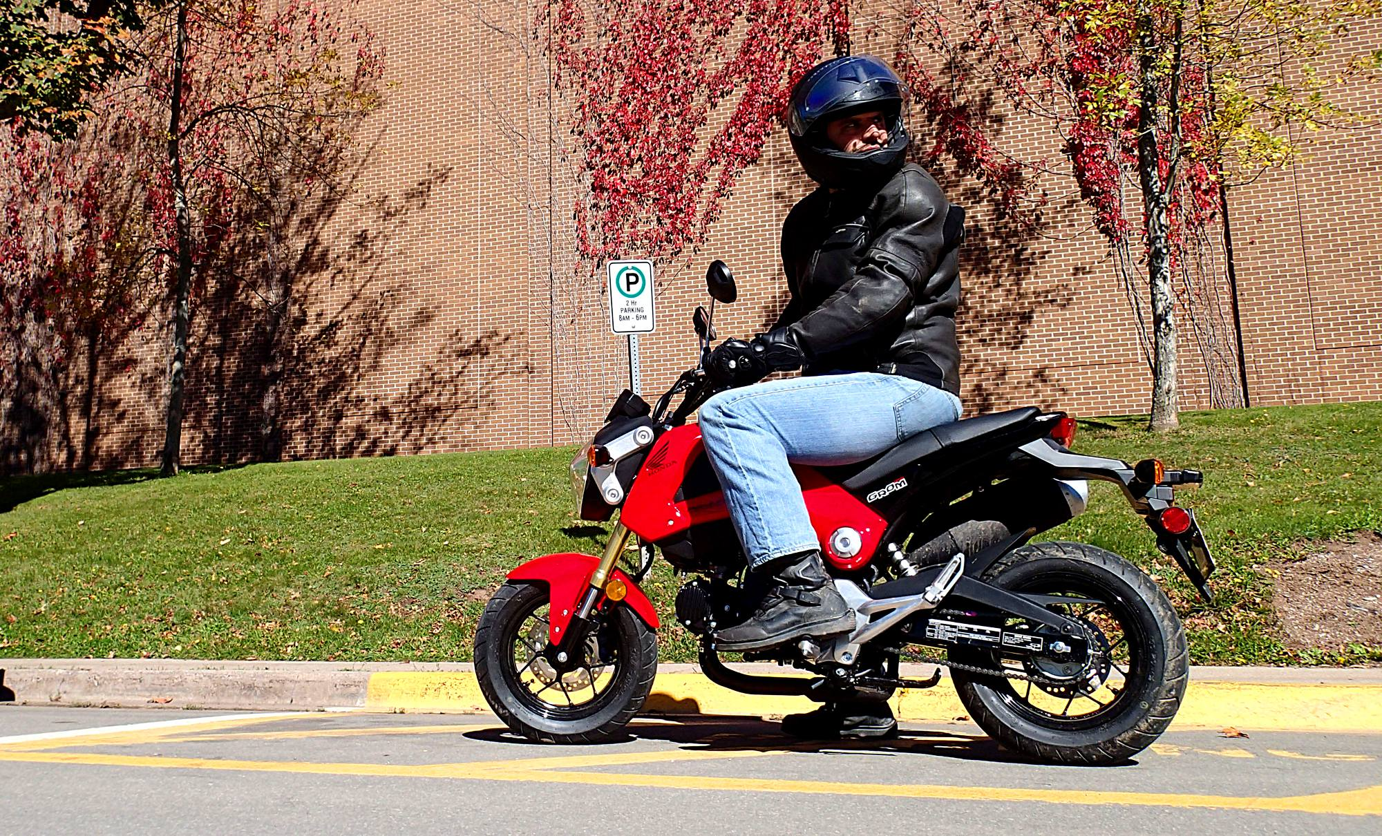 honda grom: world's smallest hooligan bike | canada moto guide